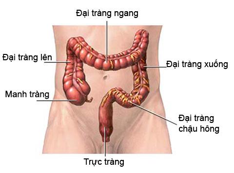Chuẩn đoán ung thư đại trực tràng 1