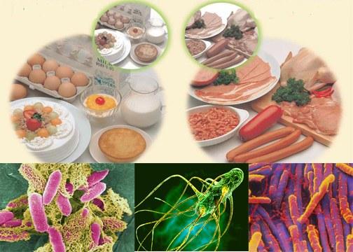 Nhận biết ngộ độc thực phẩm 1