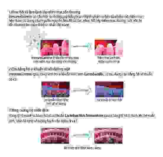 Công dụng của ImmuneGamma