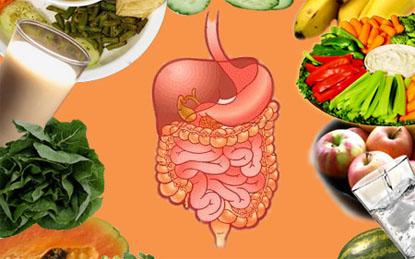 Trị chứng rối loạn tiêu hoá ngày Tết 1