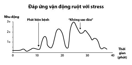 Stress ảnh hưởng tới đường tiêu hóa như thế nào? 1