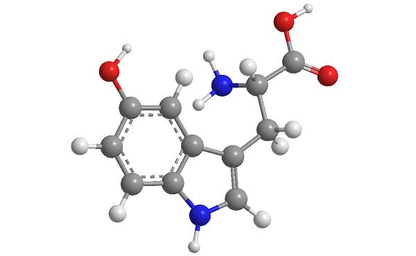 5HTP – Triển vọng mới trong Điều trị Hội chứng ruột kích thích. 1