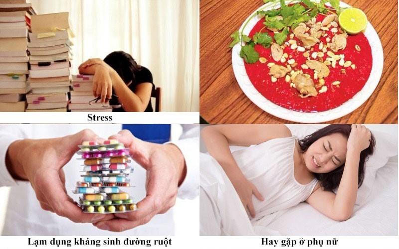 Nguyên nhân gây bệnh viêm đại tràng co thắt 1